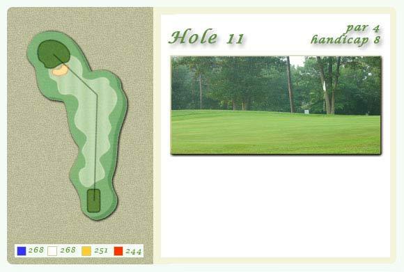 hole11