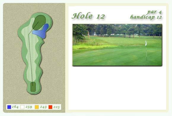 hole12